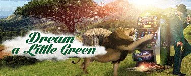 Mr Green Dream in Green